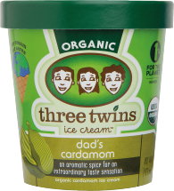 Three Twins Organic Ice Cream product image.