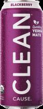 Organic Sparkling Yerba Mate product image.