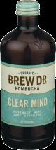 Organic Kombucha product image.